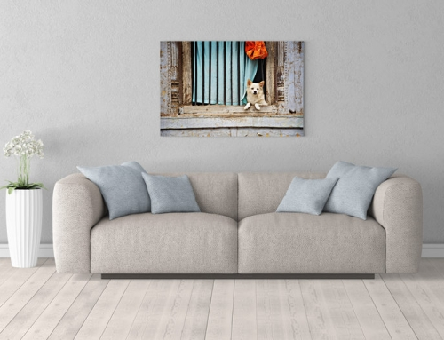 Art print: Little Dog watching